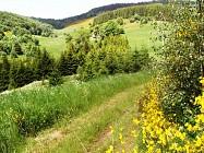 La vallée du Vizézy