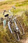 BOUCLE n°12 - COMMEQUIERS - agréée Vendée Vélo