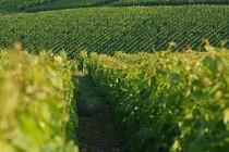 Des coteaux du champagne aux sources de la Dhuys