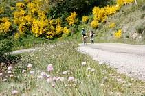 Sur les Routes de l'Ardéchoise : La Châtaigne
