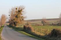 Circuit du Moulin