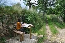 Randocroquis - Sentier du Bois Madame