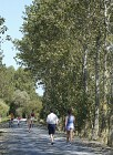 Sentier de La Mongie - Soullans
